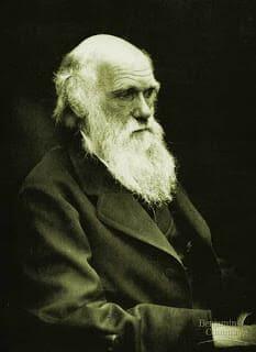 Biografi Charles Darwin, Profil dan Kisah Perjalanan Penemu Teori Evolusi