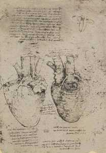 Biografi Leonardo Da Vinci, Seniman Paling Jenius di Muka Bumi